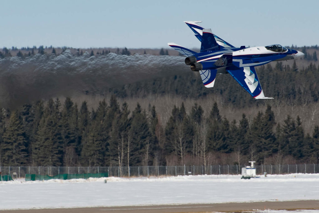 Canadian Hornet with Snow